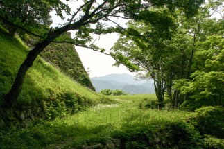 Tsuwano-Jo: the old castle