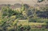 2010-08Hyderabad-1979