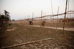 201201-JanakpurWeek3P1 (171 of 273)