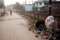 201201-JanakpurWeek3P1 (206 of 273)