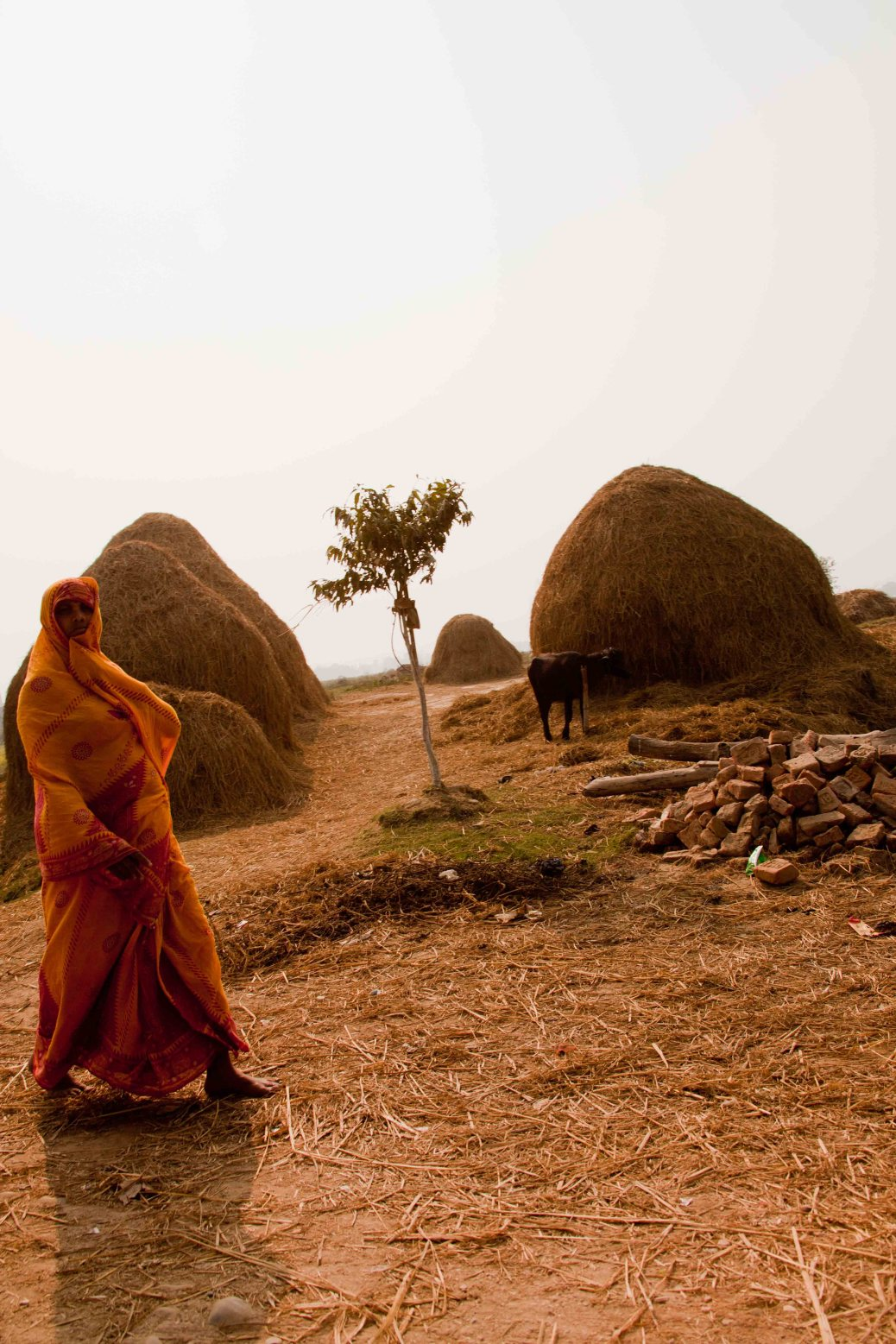 Rural Woman: Dhanusha