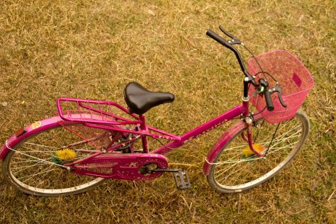 The famous Pink Bike