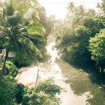 The Jungle climes of Varkala