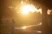 Wimbledon common in Golden Hour (4)