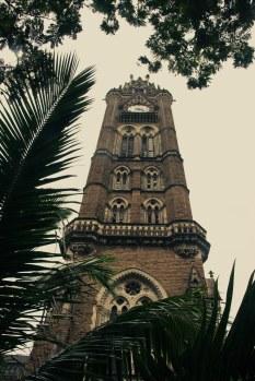 Mumbai2010-2463