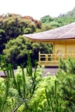 Ginkakuji IV