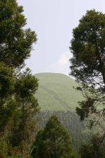2006-06Aso-1412
