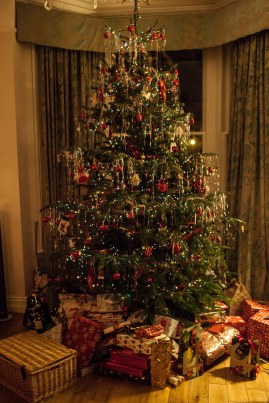 2013-12ChristmasWithFamily-1711